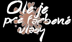 Oleje pre farbené vlasy - HODNOTENIE